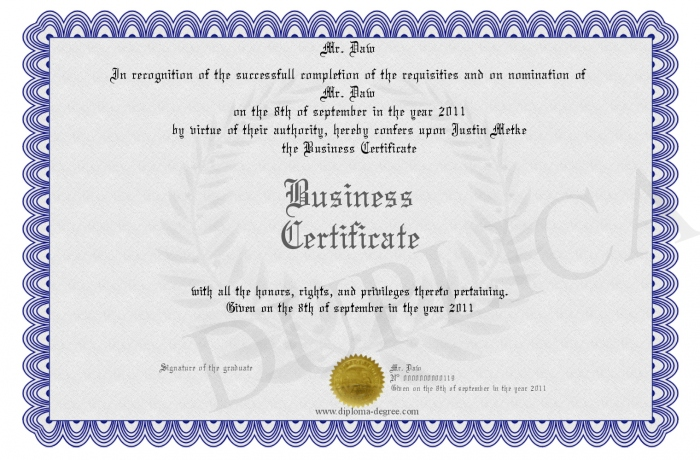 700-119-Business%20Certificate.jpg