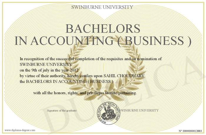 Accounting Degree Bachelors