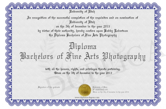 Diploma Bachelors Of Fine Arts Photography
