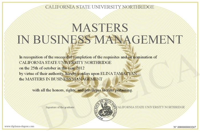 Masters In Business Management