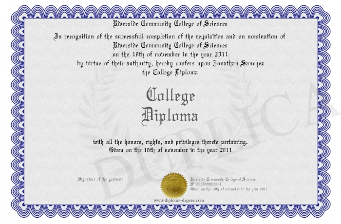 college diploma vs degree Now for the diploma vs degree: go for a diploma if you see the silks which will be leaning in diploma are in demand than go for the diploma and on the other hand if you see the degree will teach.